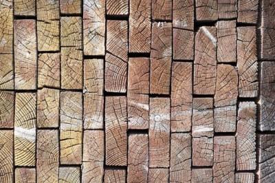 Timber in wood yard